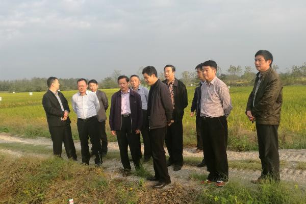 农业部农机化司李伟国司长一行到江西调研农机购置补贴工作