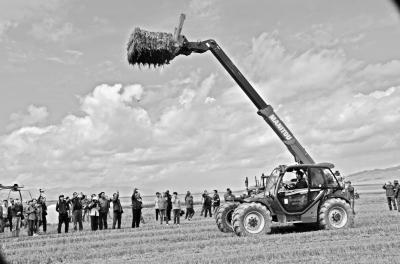 畜牧机械:农机行业的新势力.jpg