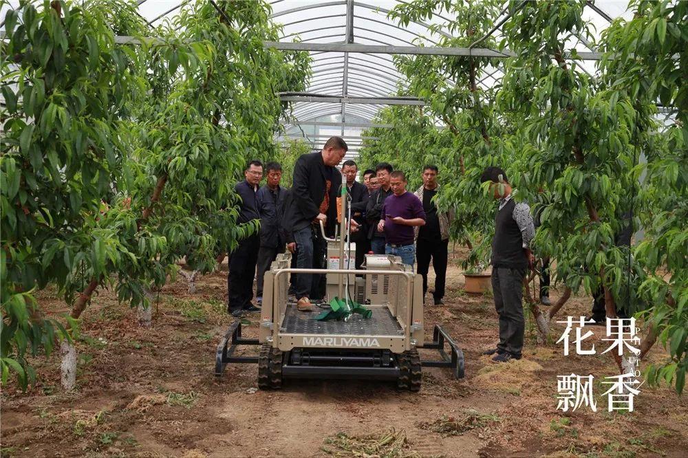 我们为什么用不起果园机械,除了穷,还有其他原因吗?