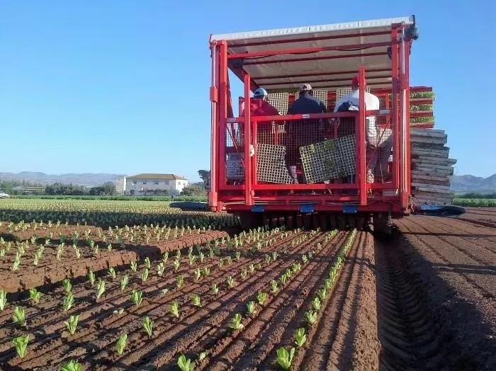 美国科学院公布:未来农业发展的五大方向